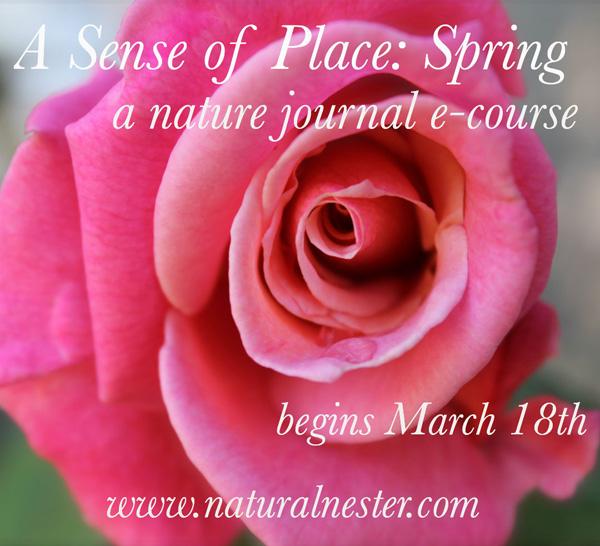 spring ecourse final pic