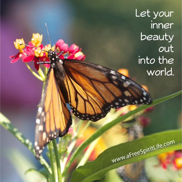 inner-beautfy-butterfly-2