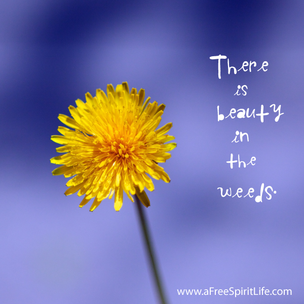 beauty-in-the-weeds