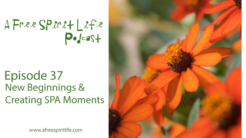 Podcast Episode 37: New Beginnings & Creating SPA Moments